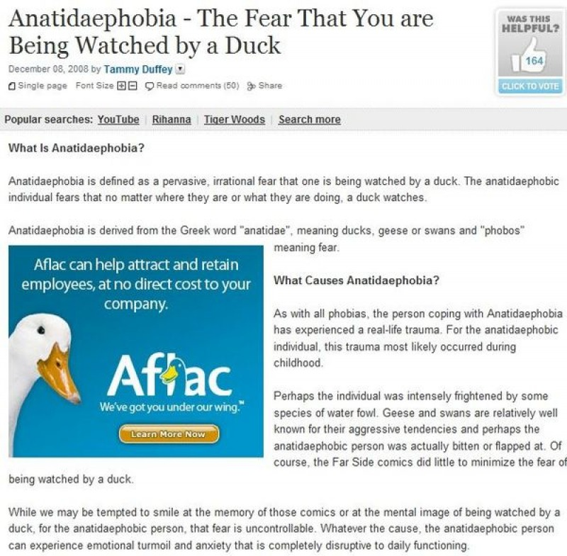 Have You Heard About Anatidaephobia Before?-15 Times Placement Ruined Everything