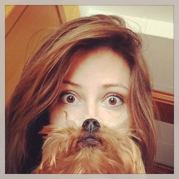 A Perfect Dog Beard Meme