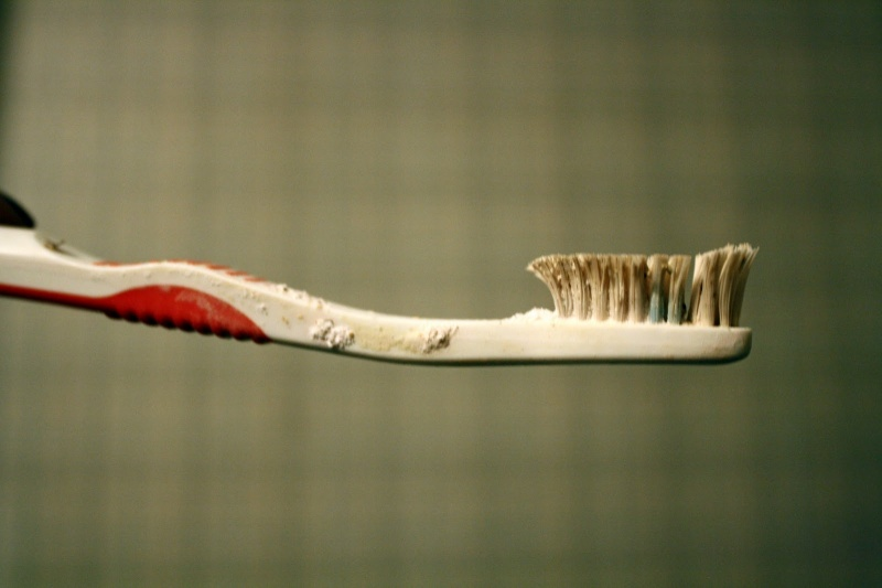 And Toothbrush Joins the List-15 Things You Use Daily That Are Actually Dirtier Than Your Toilet Seat