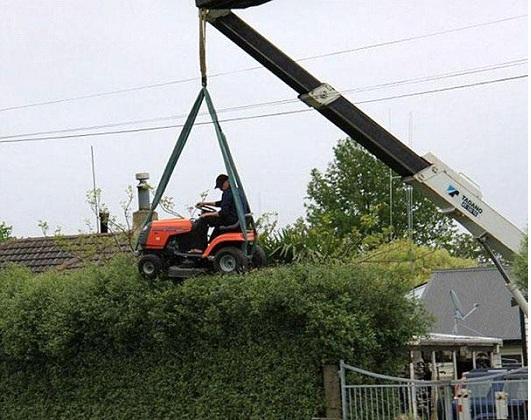 Hedge Trimming-Photos Of Men Being Literally Too Stupid