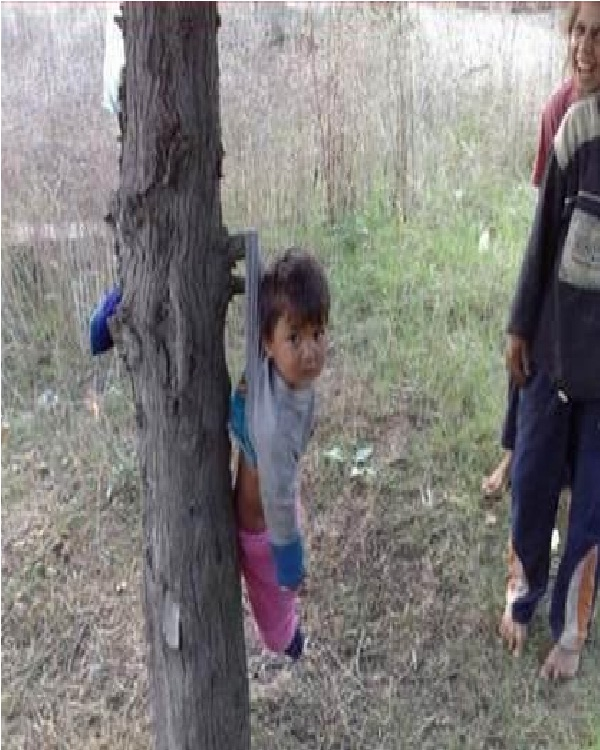 Baby Hangs from a Tree-Worst Parenting Fails