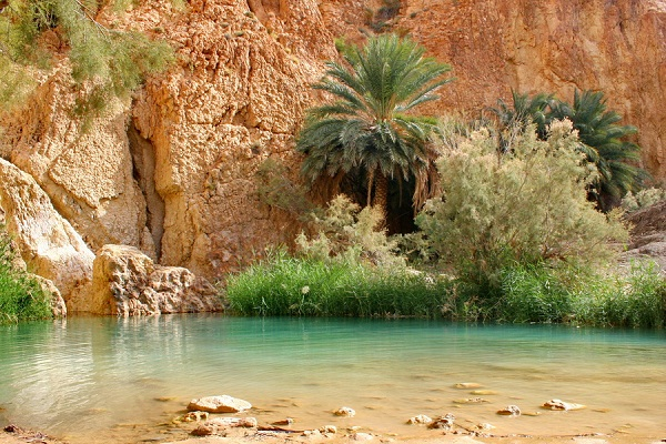 Chebika Oasis, Tunisia-Beautiful Oases Around The World