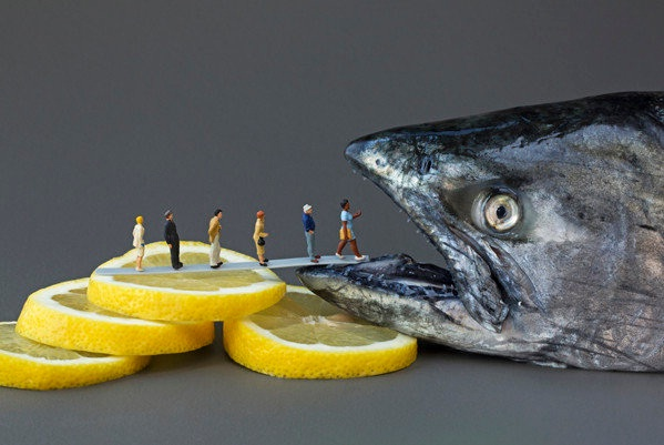 Enter the fish of doom!!-Adventures Of Tiny People In The World Of Food
