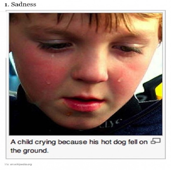 Poor Hot Dog Picture Caption-12 Most Ridiculous Wikipedia Picture Captions