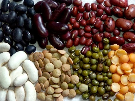 Legumes-Foods Without Gluten