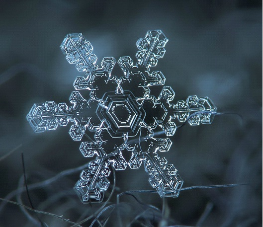 Star Gazing-Awesome Close-Up Pictures Of Snowflakes By Alexey Kljatov