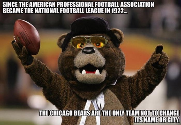Go the Bears!!-24 Interesting Yet Mind Blowing Facts