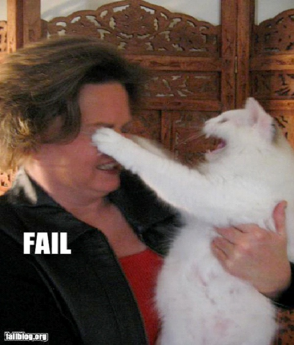 I'll Scratch Your Eyes Out-Funny Animal Fails