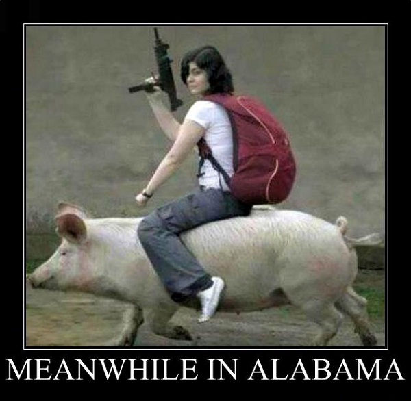 Alabama-Best Meanwhile In..Memes