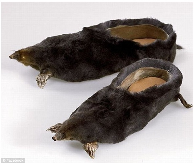 Moles-12 Craziest Slippers You'll Ever See