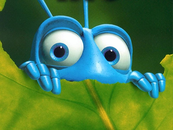 Bug eating-Crazy Science Facts You Never Knew