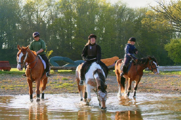 Keep Active with Horse Riding-Tips For Being Active