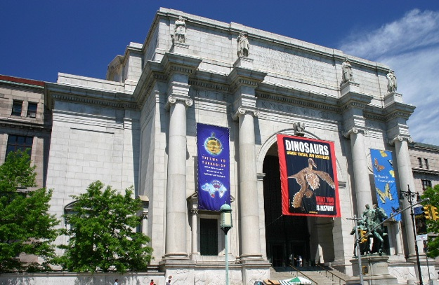 American Museum of Natural History-Best Places To Visit In New York