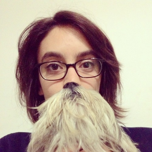 Classic style dog beard meme-15 Epic Dog Beards That Will Make You Want To Have One