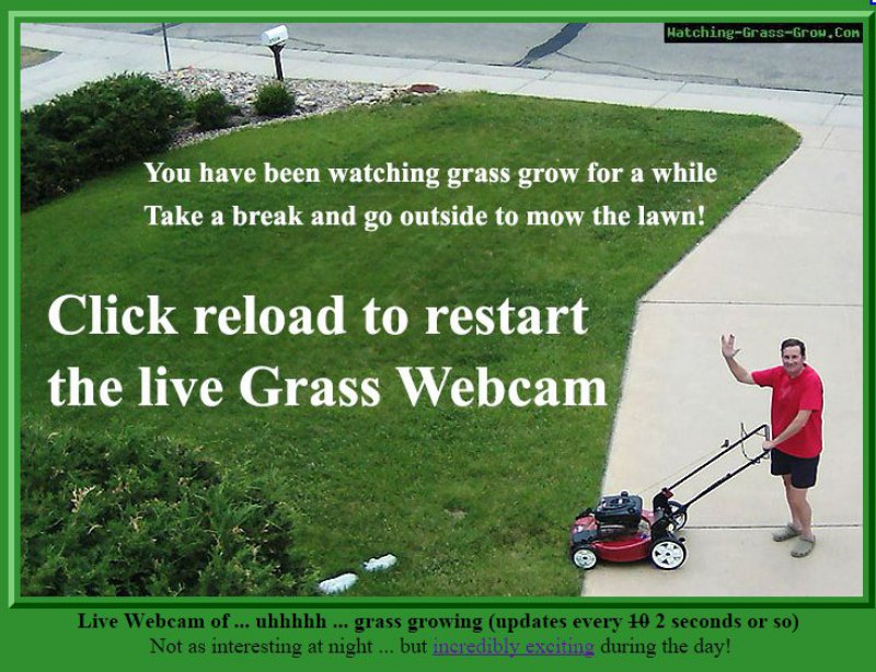 Watching-Grass-Grow.com-15 Most Useless And Pointless Websites On Internet