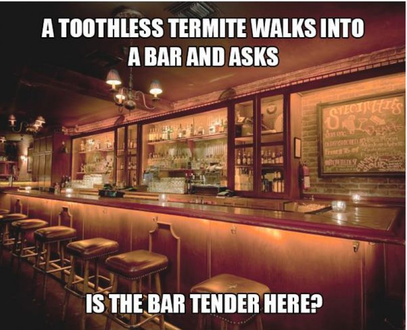 Is the Bar Tender Here?-15 Terrible Jokes That Are Actually Funny