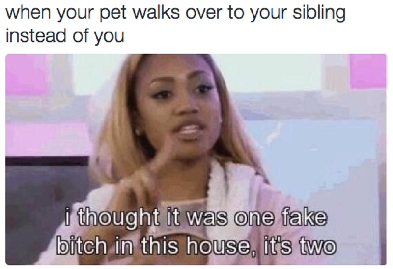This Feeling of Dejection-15 Hilarious Images You Can Relate To If You Have Siblings