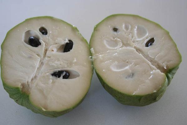 Cherimoya-Most Popular Exotic Fruits