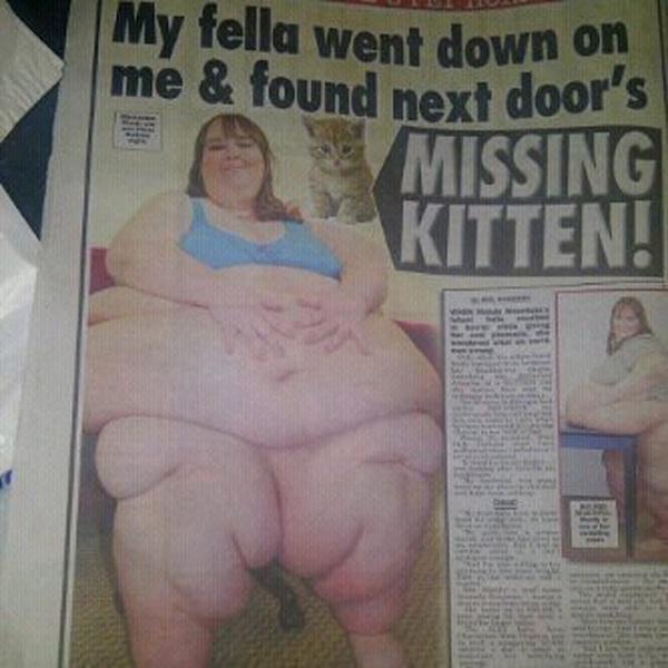 Poor kitten-12 Funniest Newspaper Headlines Ever Written