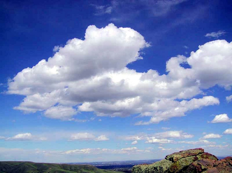 Cumulus-Different Types Of Clouds