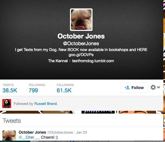 October Jones @OctoberJones-12 Funny Twitter Accounts To Follow