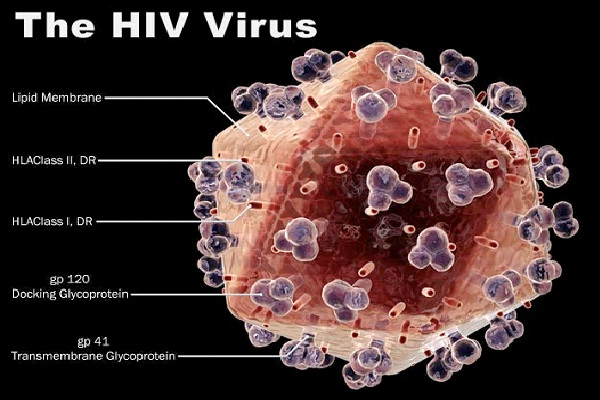 HIV Virus Is A Pussycat-Predictions About The Future That Failed