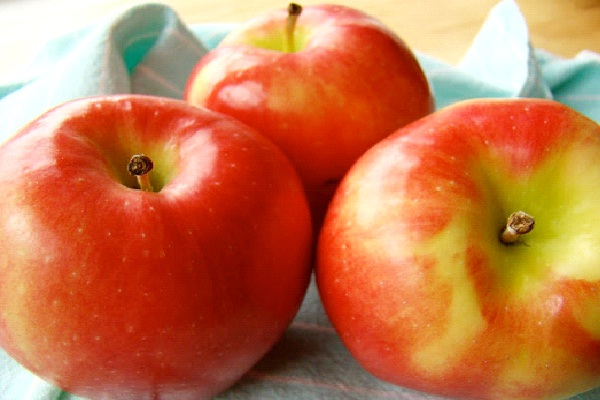 Apples-Most Poisonous Foods We Like To Eat