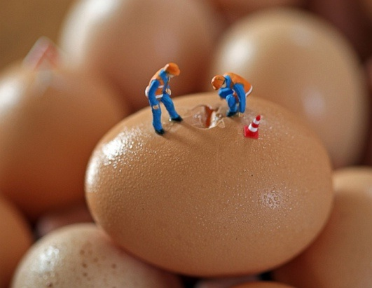 Peeking into the egg-Adventures Of Tiny People In The World Of Food