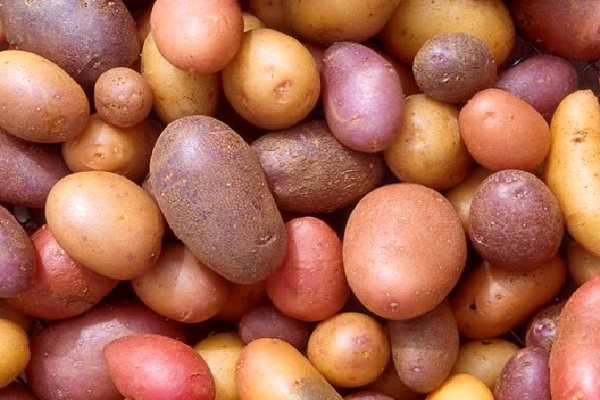 Potatoes-Foods That Help Building Blood