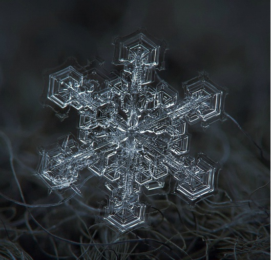 Stars In The Sky-Awesome Close-Up Pictures Of Snowflakes By Alexey Kljatov