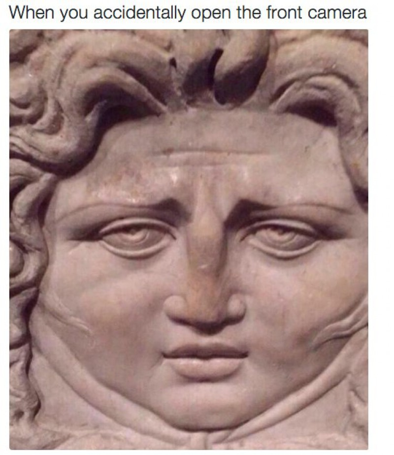 When You Accidentally Open the Front Camera-15 Art History Reactions That Are Sure To Make You Laugh
