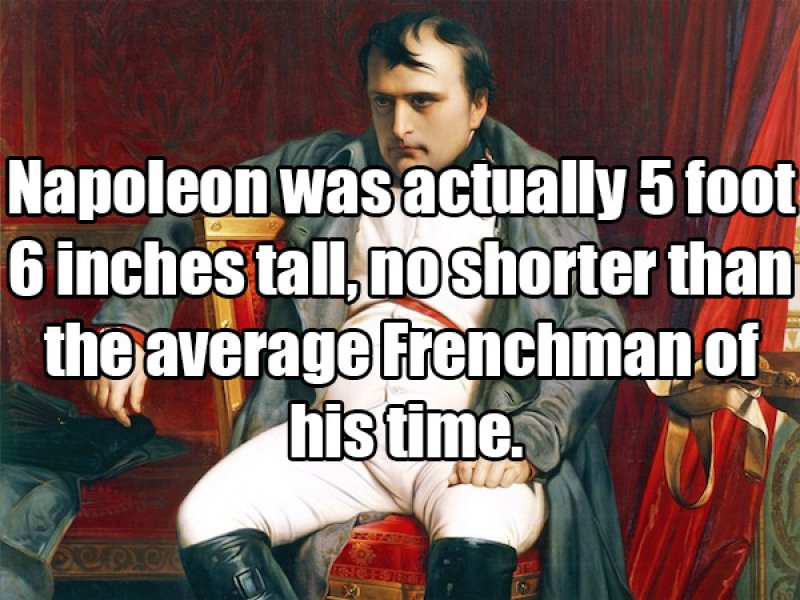 Napoleon Wasn't a Short Guy-15 Amusing Facts That Are Actually True