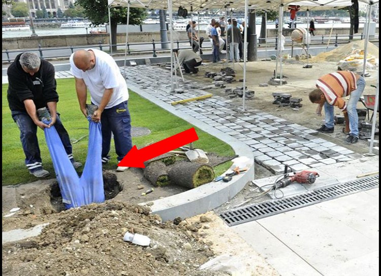 Down the Rabbit Hole-15 Workers Who Are Doing It Totally Wrong