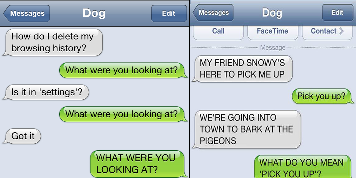 15 Hilarious Dog Texts