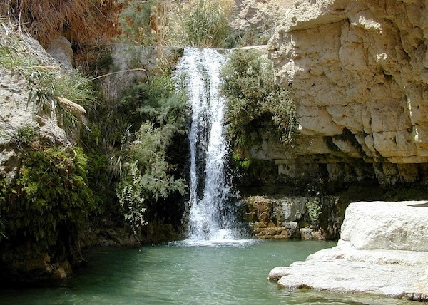 Nahal David Oasis, Israel-Beautiful Oases Around The World