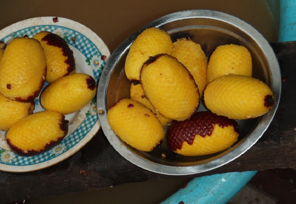 Aguajefruit-Most Popular Exotic Fruits