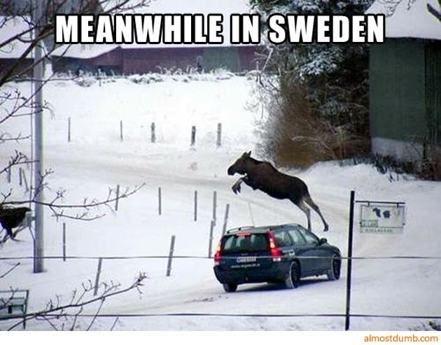 Car jumping-Best Meanwhile In Sweden Memes