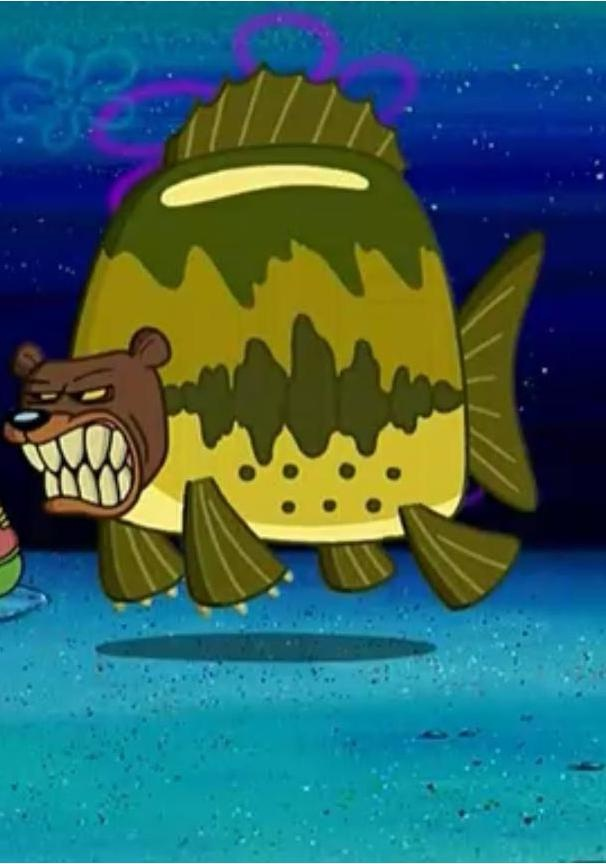 Sea Bear-Things We Learned From Spongebob Squarepants