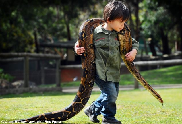 Just carrying a snake around-Meet Chuck Norris's Wife And Kids