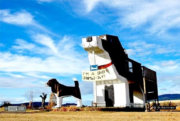 Dog Bark Park Inn-Weirdest Hotels In The World