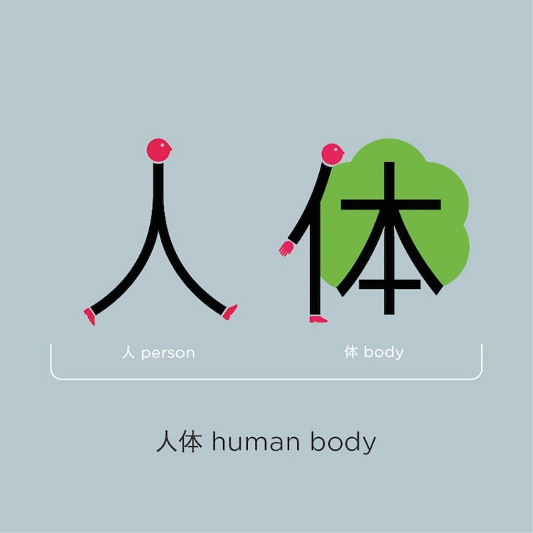 Human body-Amazing And Easy Chinese Language Learning By Shao Lan