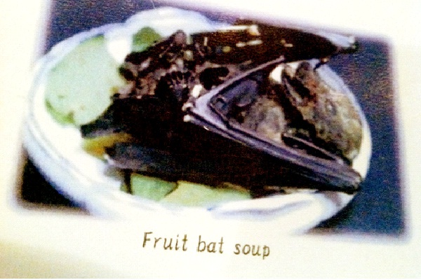 Fruit Bat Soup-Most Gross Foods In The World