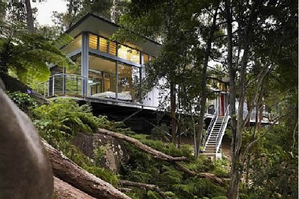 Dreams of a Tree House-Amazing Glass Houses