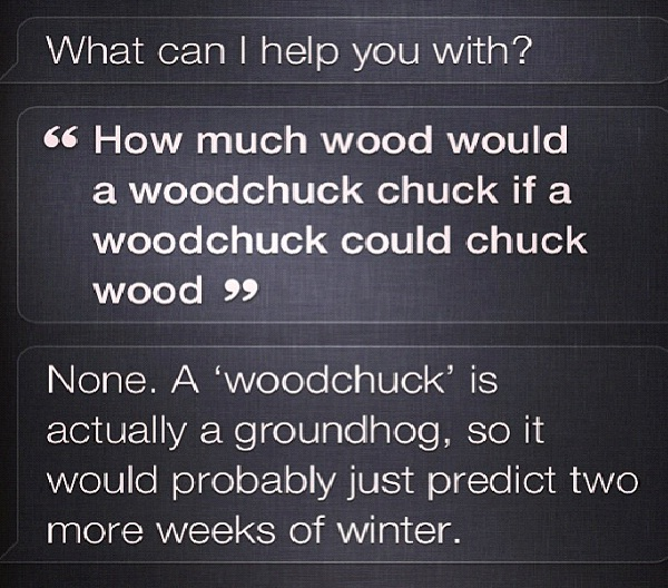 Smartypants Siri-12 Funny Conversations You Can Have With Siri