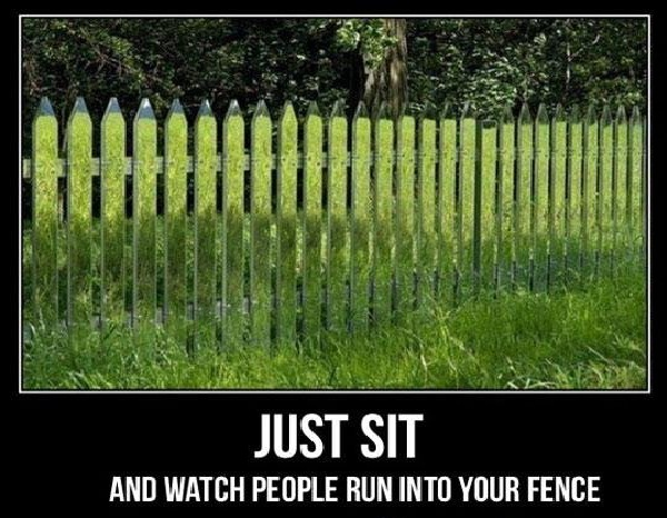 Blending In-Hilarious Fence Fails