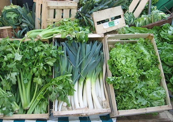 Save Money and Your Health-Health Benefits Of Eating Green Vegetables