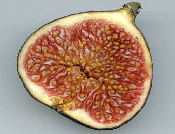 Figs-Foods That Help Building Blood