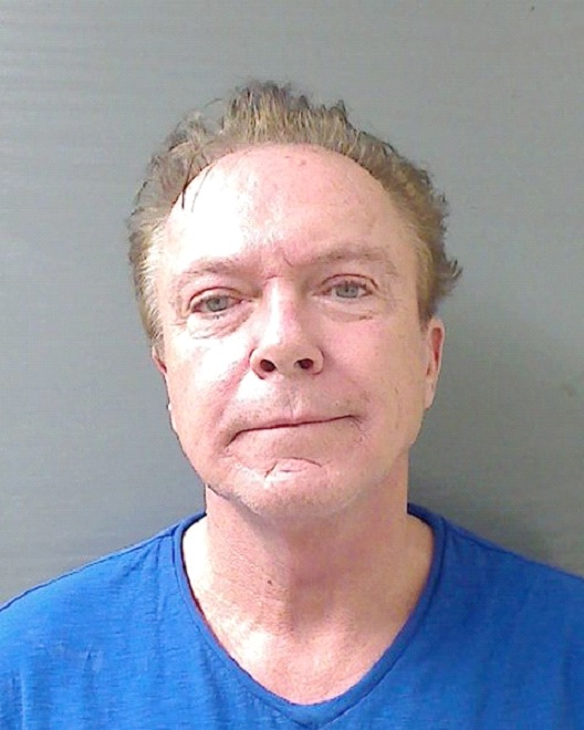 David Cassidy-Celebs Who Got Arrested In 2013