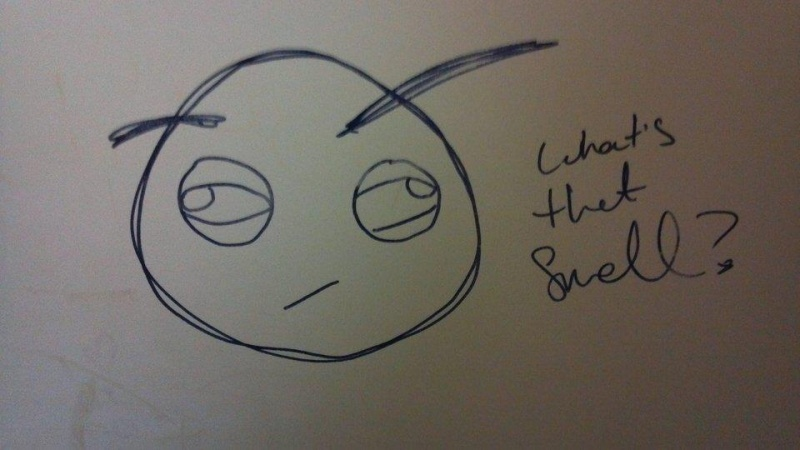 What's that Smell?-15 Hilarious Toilet Graffiti Images Ever