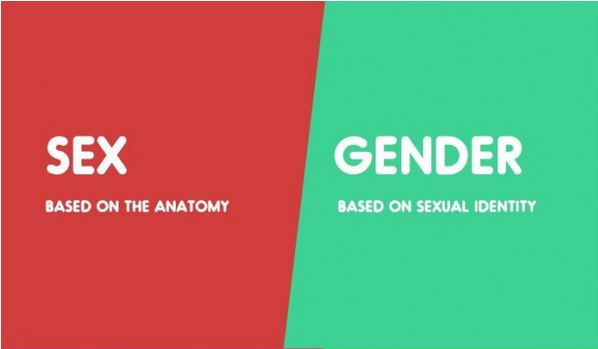 Sex vs. Gender-15 Words That Sound Similar But Have Different Meaning